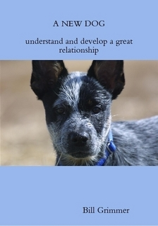 A New Dog Ebook